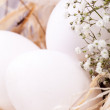 Plain undecorated Easter eggs in nest — Stock Photo #37455161