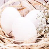 Plain undecorated Easter eggs in a nest — Stock Photo