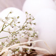 Stock Photo: Plain undecorated Easter eggs in nest