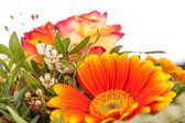 Vivid orange gerbera daisy in a bouquet — Stock Photo