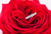 Diamond engagement ring in the heart of a red rose — Foto Stock