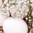 Plain undecorated Easter eggs in nest — Stock Photo #37982231