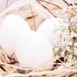 Plain undecorated Easter eggs in nest — Stock Photo #37982403