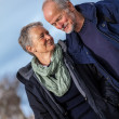 Happy senior couple elderly people together outdoor — Stock Photo #37989711