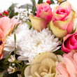 Stock Photo: Pink and white flowers