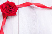 Red rose with ribbon border — Stock Photo