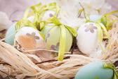 Colourful green Easter eggs in straw — Stock Photo