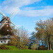 Traditional wooden windmill in a lush garden — Stock Photo #40760903