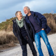 Stock Photo: Happy elderly senior couple walking on beach