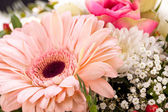 Bouquet of fresh pink and white flowers — Stock fotografie