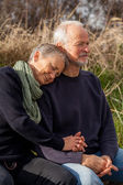Happy senior couple relaxing together in the sunshine — Stok fotoğraf