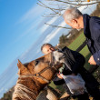 Elderly couple feeding a horse — Stock Photo
