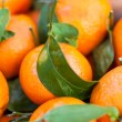 Stock Photo: Tangerines Background