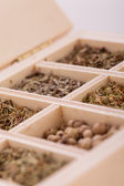 Tray with assorted natural spices and herbs — 图库照片