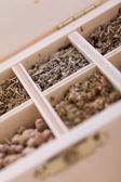 Tray with assorted natural spices and herbs — Stock Photo