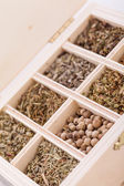Tray with assorted dried spices and herbs — Stock Photo