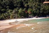 Beautiful tropical beach with lush vegetation — Stock Photo