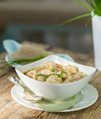 Dish of savory pork tortellini in broth pelmeni russian — Stock Photo