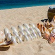 Conchs and seashells for sale on a beach — Stock Photo #47010485