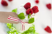 Raspberries and yoghurt or clotted cream — Stock Photo