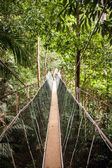 Narrow cable suspension footbridge — Stock Photo