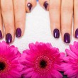 Постер, плакат: Purple nails