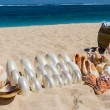 Conchs and seashells for sale on a beach — Stock Photo #48672439