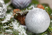 Christmas baubles on branch — Stock fotografie