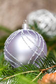 Christmas ornaments — Foto de Stock