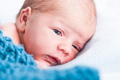 Small infant wrapped in fabric — Stockfoto