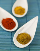 Dried ground spices in spoons — Stock Photo