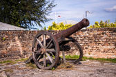 Old nineteenth century cannon — Stock Photo