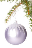 Christmas ball hanging from a branch of a fir tree — 图库照片
