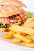 Club sandwich con papas fritas — Foto de Stock