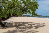 Tropical beach with lush vegetation — Stock Photo