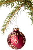 Christmas ball hanging from a branch of a fir tree — Stock Photo