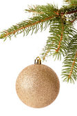 Christmas ball hanging from a branch of a fir tree — Stockfoto