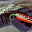 Chocolate with chilli and ear of wheat — Stockfoto