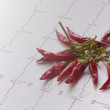 Electrocardiogram with a bunch of dehydrated chillies — Stock Photo