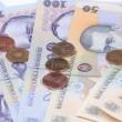 Romanian money close view — Stock Photo