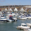 Luxury boats moored at a marina — Stock Photo