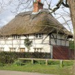 Thatched cottage — Stock Photo #22590727