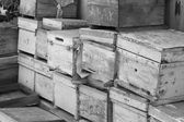 Wooden boxes ready for recycling — Stock Photo