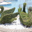 The art of topiary — Stock Photo
