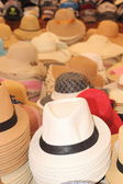 Trilby hats — Stock Photo