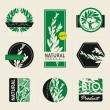 Nature-themed labels, banners and badges with green leaves - Stock Vector