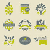Organic retro labels, badges and other elements with leaves — Stock Vector