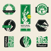 Nature-themed labels, banners and badges with green leaves — Stock Vector