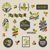 Nature labels and emblems with green leaves — Vecteur
