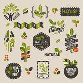 Natuur labels en emblemen met groene bladeren — Stockvector